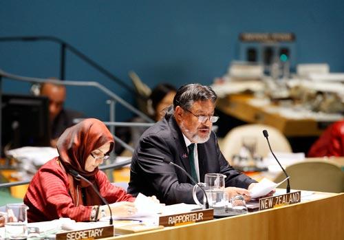 Maori address UN over land rights, customs