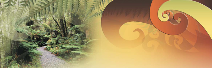 indigenous_values_banner[1]