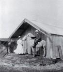 Maori Nursing