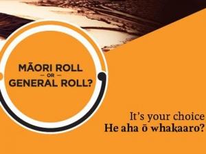 maori_roll_or_general_roll_N2