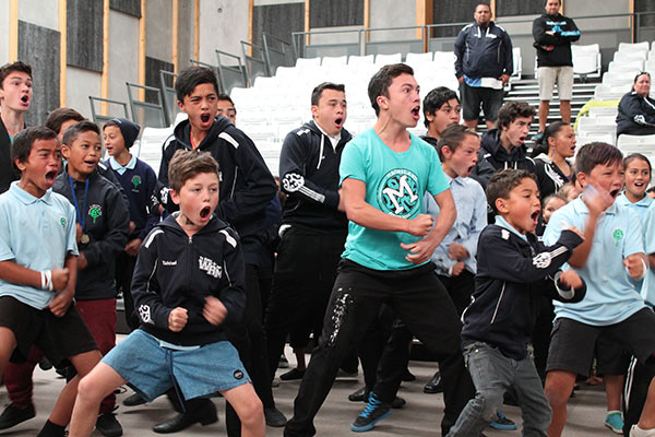 Maoriland3