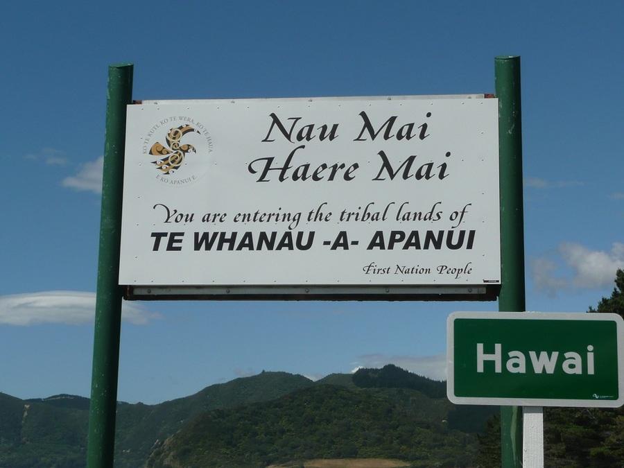 Te_Wahanu-a-Apanui_sign