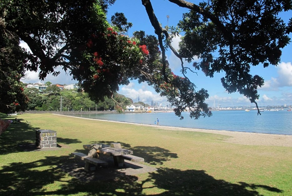 Okahu Bay Beach